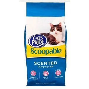ARENA CATS PRIDE SCOOPABLE