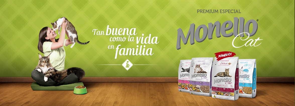 Monello Gatos