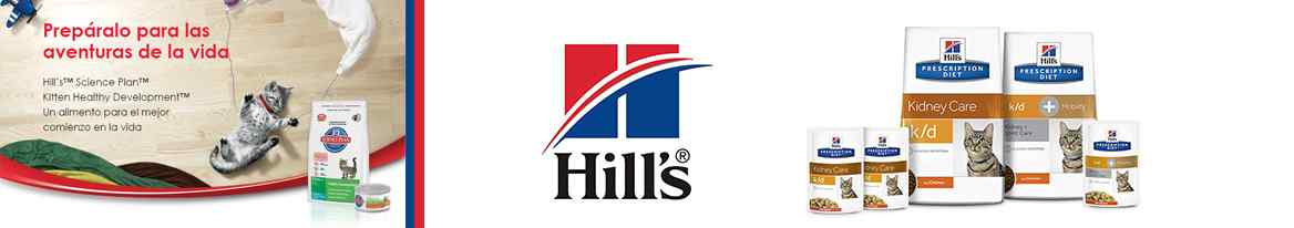 Hills Gatos